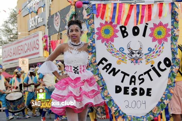 Carnaval 2017: Terça-feira, desfile do Grupo Especial da Folia dos Bois